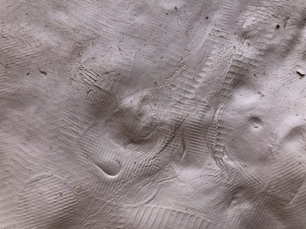 A detail image of a section of a raw ceramic surface containing various impressions.